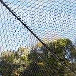 Jakob Webnet Bird Enclosure