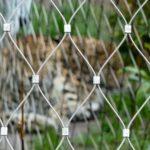 Serengeti Park Hodenhagen Enclosure Webnet