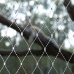 Serengeti Park Hodenhagen Webnet Enclosure