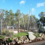 Serengeti Park Hodenhagen Webnet Enclosure Exterior