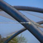 Temaiken Zoo Bird Aviary Webent Attachment