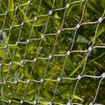 Temaiken Zoo Bird Aviary Webent